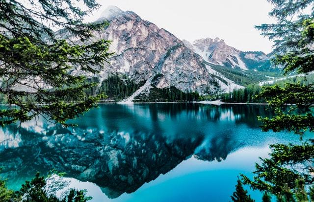 Varför naturen är livsviktig för allt levande